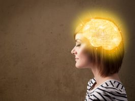 neuroscience, brain, brain science, productivity, goals, success, mindset, attitude, results