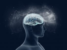 brain training exercises, brain health, mental clarity, brain exercises, brain training, mindfulness, mindful activities, neuroscience, neuroplasticity
